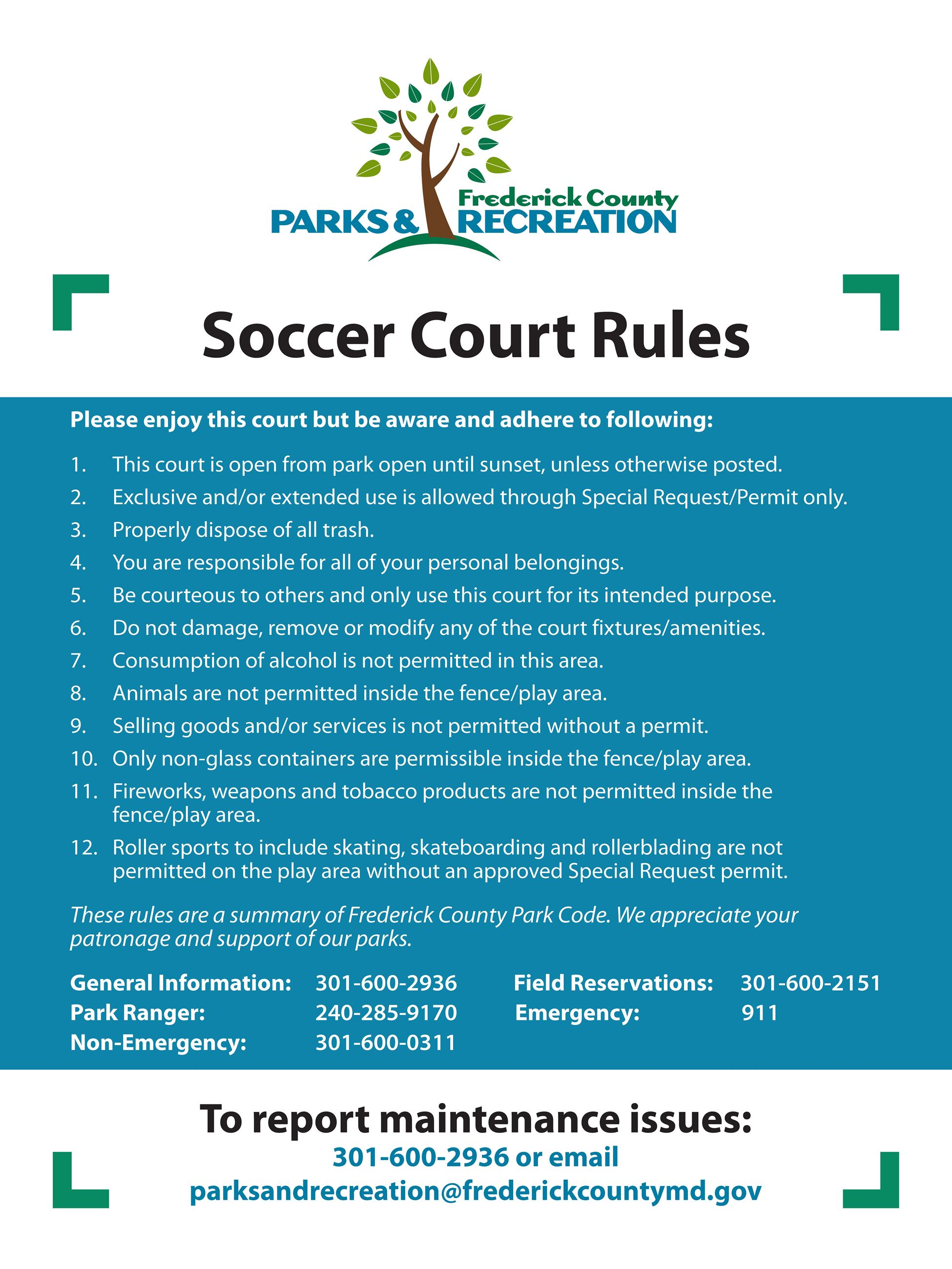 Soccer Court Rules